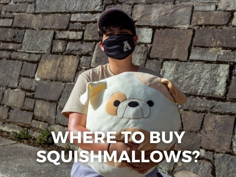 where do they sell squishmallows